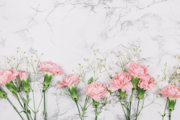 pink carnations gypsophila flowers marble textured background 23 2148066399