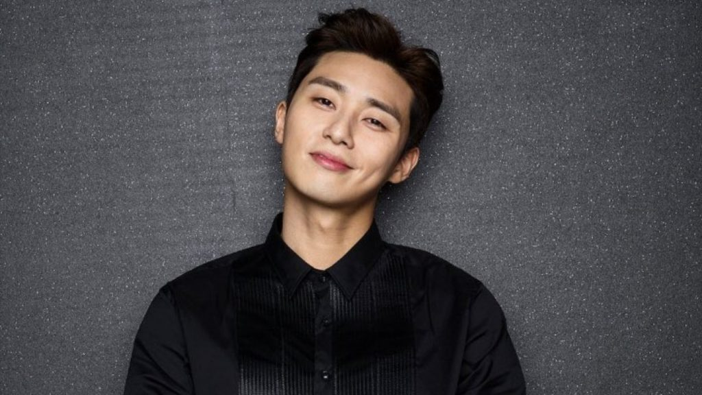 Park Seo Joon the divine fury