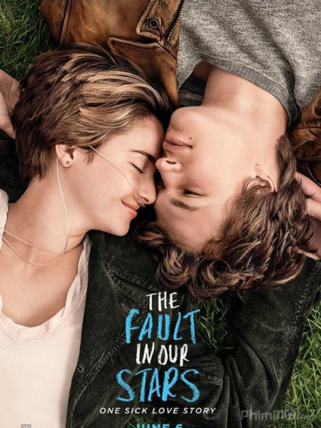 The Fault in Our Stars (phim)